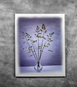 hang picture art on the wall